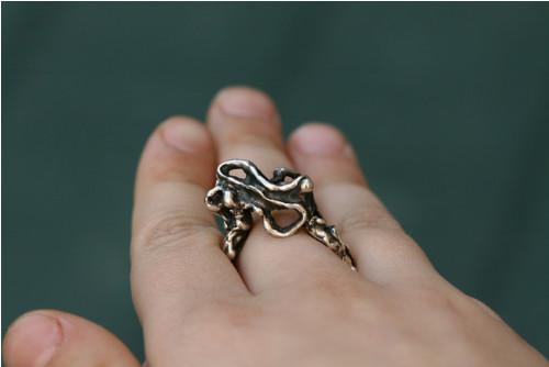 The Wild Sea Ring / Prsten Rozbouřené moře