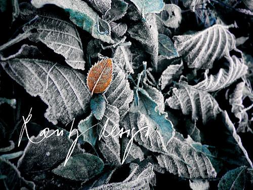 Late autumn..