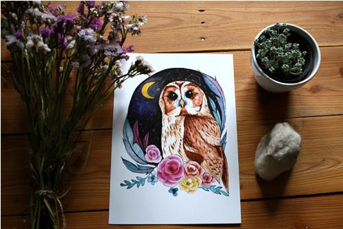 Akvarel sova A3