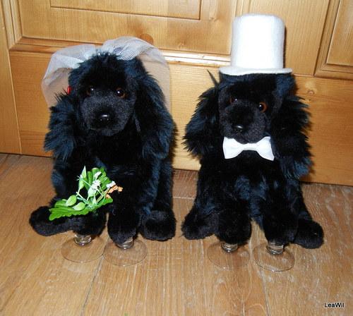 Svatební pudlíci