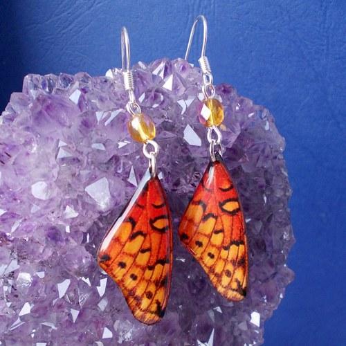 Náušnice motýl - mot24