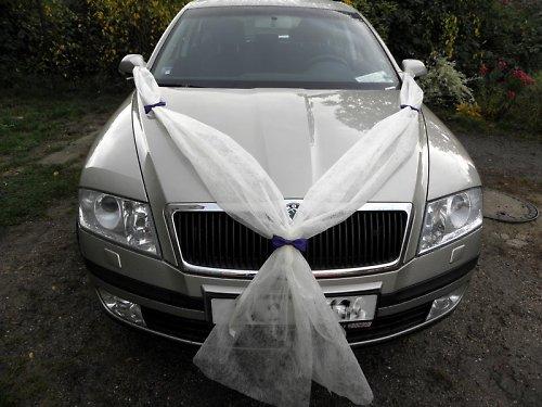 """Svatební šerpa \""""V\"""" s motýlky"""