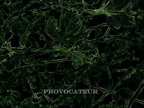 Neón Verde