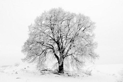 Pohled V zimním kabátku