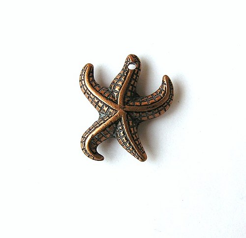 Přívěsek, mořská hvězdice, 20 mm - 1 kus