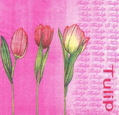 Ubrousek - tulipány