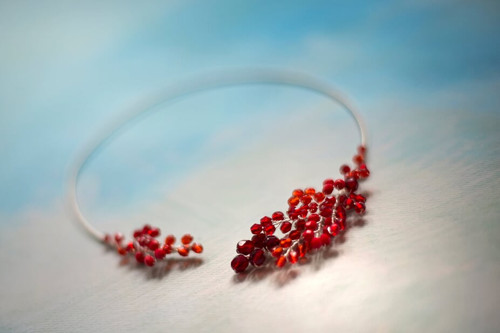náhrdelník z kapradí červeného