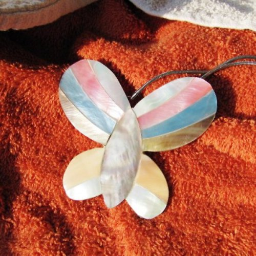 Velký, entomologicky neurčený motýl