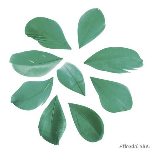Peří střižené piniová zelená 36 ks