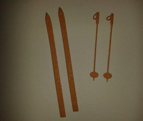 Lyže s hůlkami