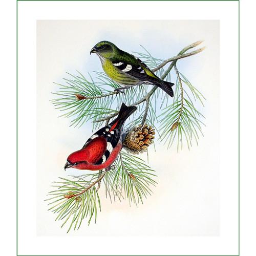 ptáci (27) - H.C.Richter  (látkový panel)
