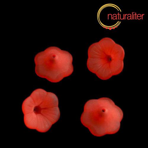Květina akrylová - petunie 20mm červená, 4ks