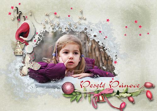Vánoční přání šípkové