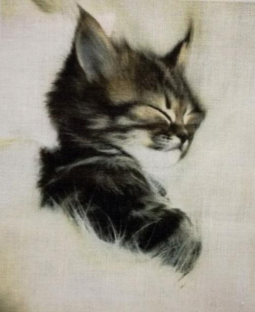 """Látkový panel 100% bavlna \""""Spící koťátko\"""""""