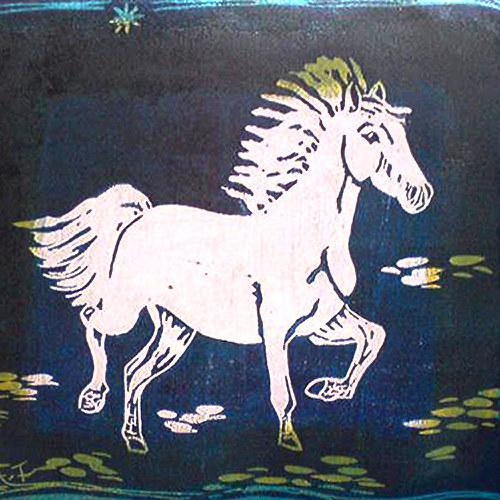koník na cestě.....z vesela si běží....