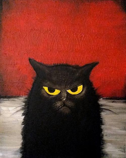 Obraz - Kočka
