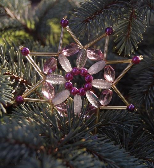 Vánoční hvězdička tajemná malá