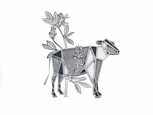 brož Geometrická kráva