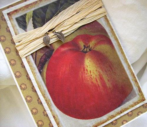 jablkové