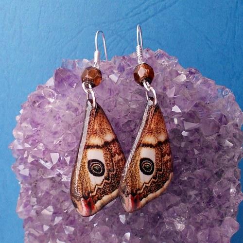 Náušnice motýl - mot64