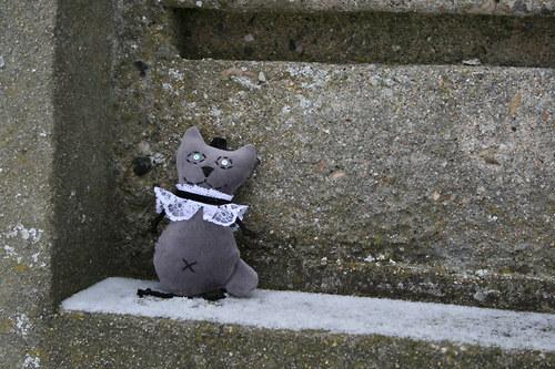 Kočička sametová s krajkovým fiží