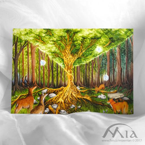 Srdce lesa - pohlednice A6