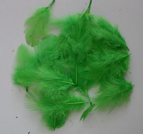 Peří zelené - 20 ks