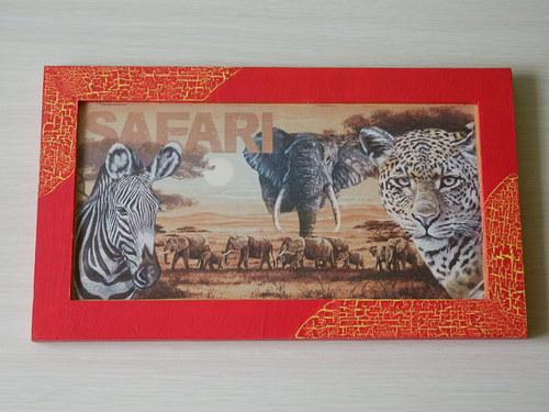 Obrázek Safari