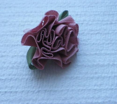 Růžička starorůžová - 2 ks