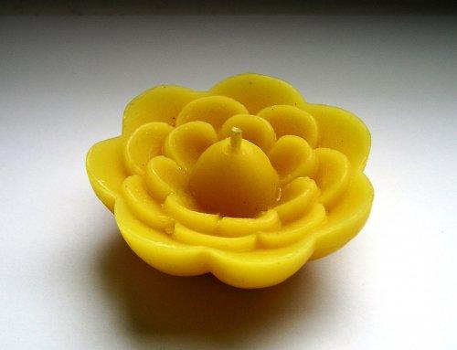 Svíčka ze včelího vosku - květ (plovoucí)