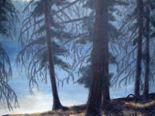 V lese u jezera