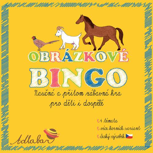 Společenská hra  OBRÁZKOVÉ BINGO - max. 12 hráčů