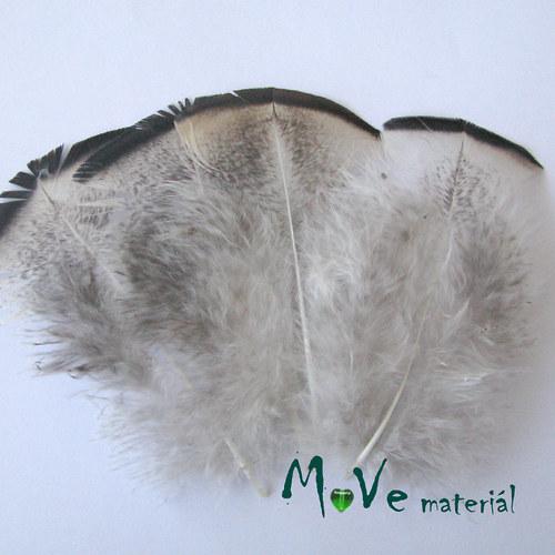 Krocaní peří hrudní 7-11cm,4ks přírodní