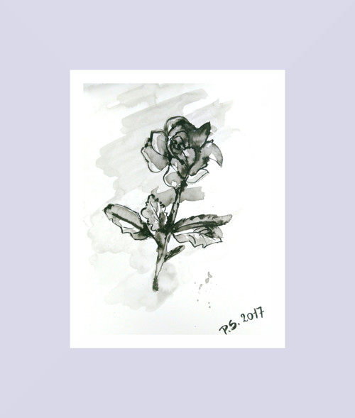 Růže (tisk A4)