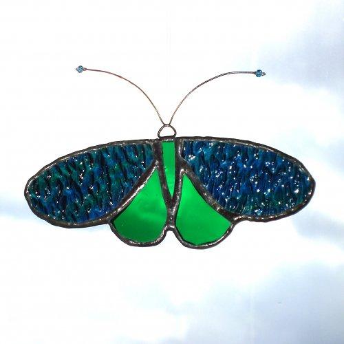 Noční motýl