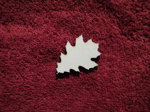 TP3D0283 - 2D výřez list javoru malý1 čistý - 4,5x