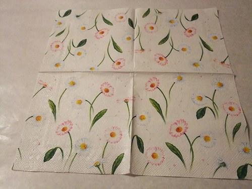 Květiny - kopretiny, sedmikrásky 1.