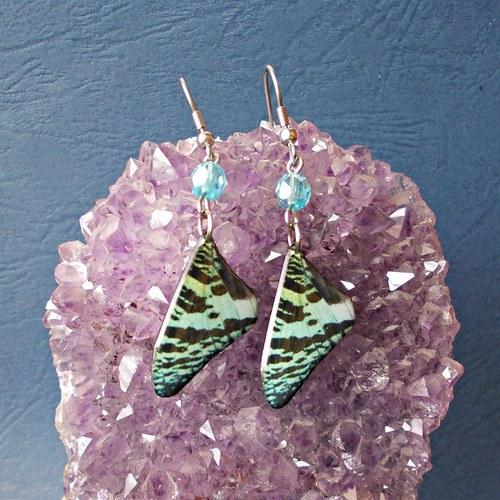 Náušnice motýl - mot120