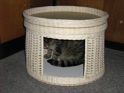 Kukaň-kabriolet pro kočičku