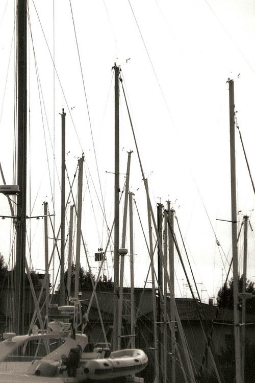 V přístavu