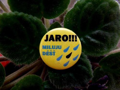 """Button \""""Miluju jaro - déšť\"""""""