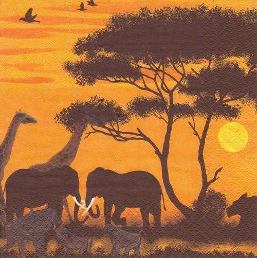 Ubrousek - Afrika savana