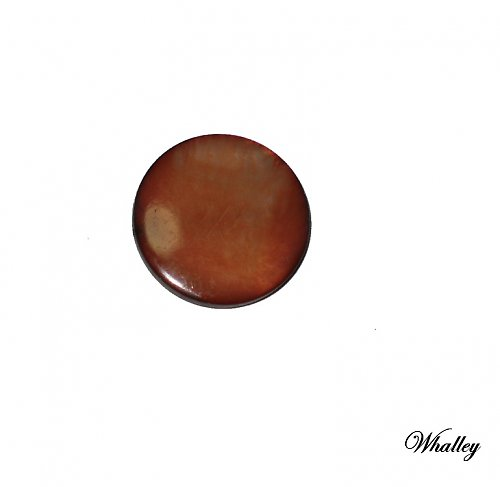 Perleťové kolečko - lentilka 20mm