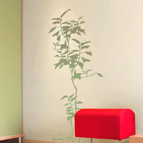 Rostlinka