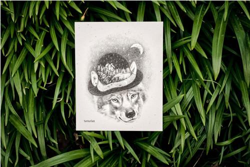 Vlk s kloboukem • pohlednice přírodní