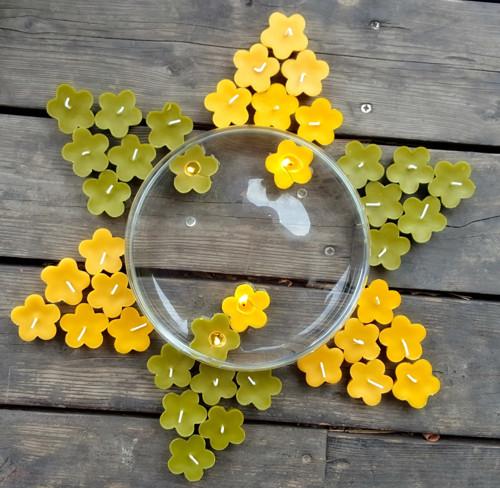 Plovoucí květinka žlutá
