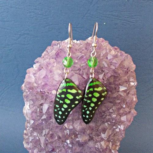 Náušnice motýl - mot121