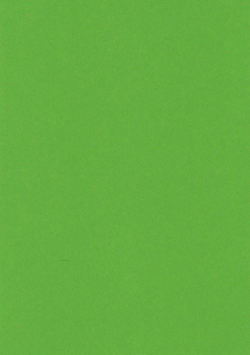 Fotokarton A4 trávově zelený