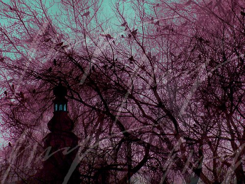 Vzpomínka na zimu 09/10 we Wroclawiu..