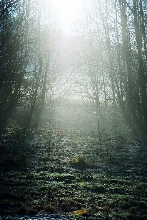 Podzimní - fotografie 30x45cm